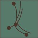 Point Acupressure Logo